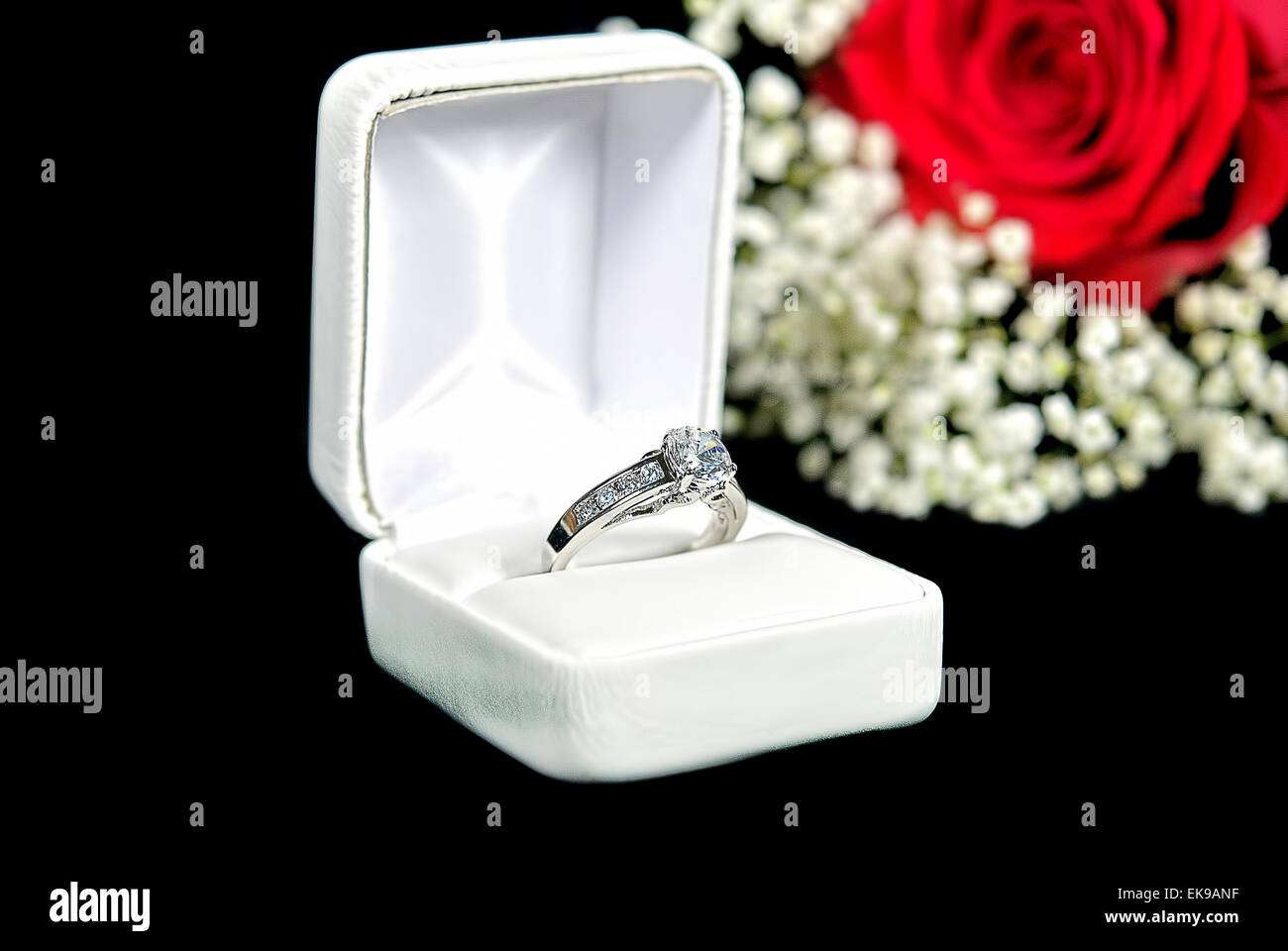Diamond ring in white box with red rose on black. - Stock Image