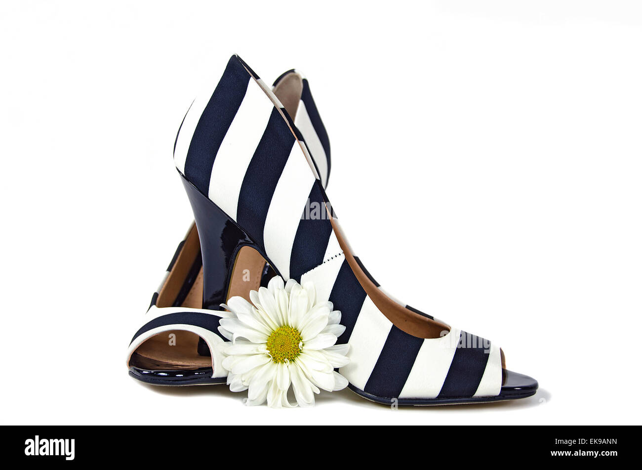 Black and white striped high heels with daisy isolated on white. - Stock Image
