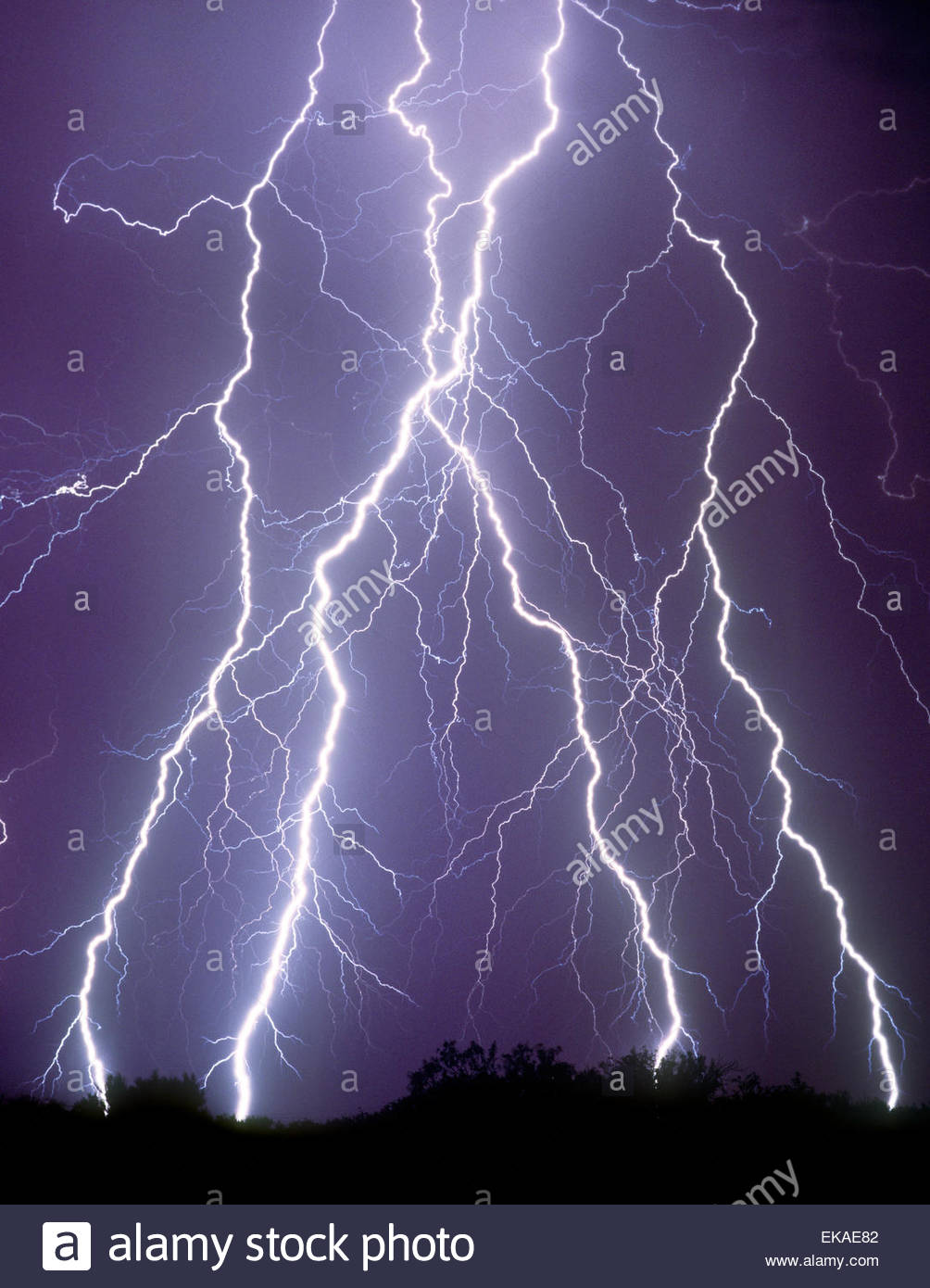 Close up lightning strikes in the desert North of Tucson Arizona from a sumer monsoon thunderstorm. Black night - Stock Image