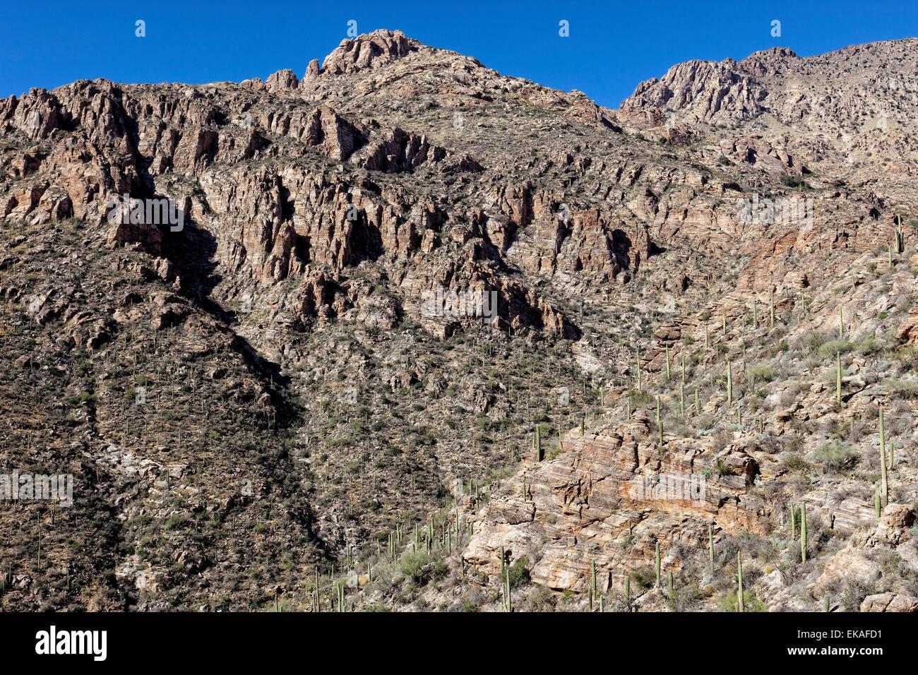 Sabino Canyon Gneiss Geology, Tucson, AZ - Stock Image