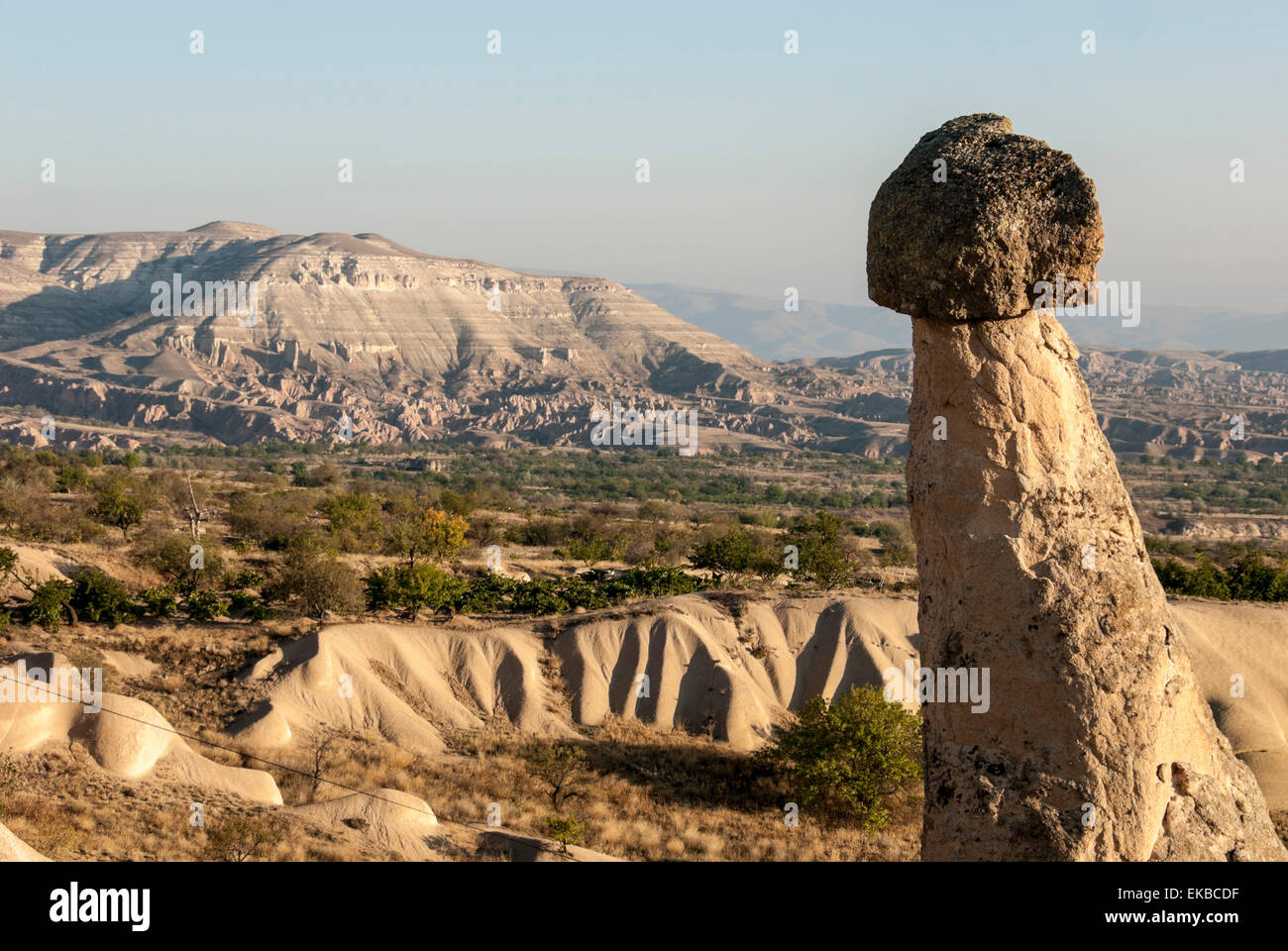 Pinnacles of volcanic ash, Urgup, UNESCO World Heritage Site, Cappadocia, Anatolia, Turkey, Asia Minor, Eurasia - Stock Image