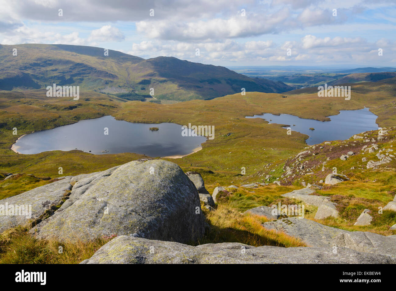View over the Glenhead Lochs from Rig of the Jarkness, Galloway Hills, Dumfries and Galloway, Scotland, United Kingdom, - Stock Image
