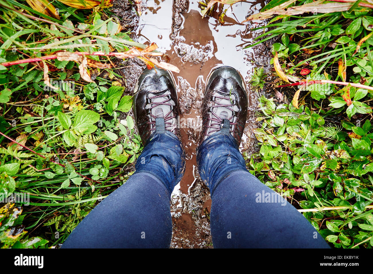 Hiking boots on muddy trail, Palmer, Alaska, USA - Stock Image