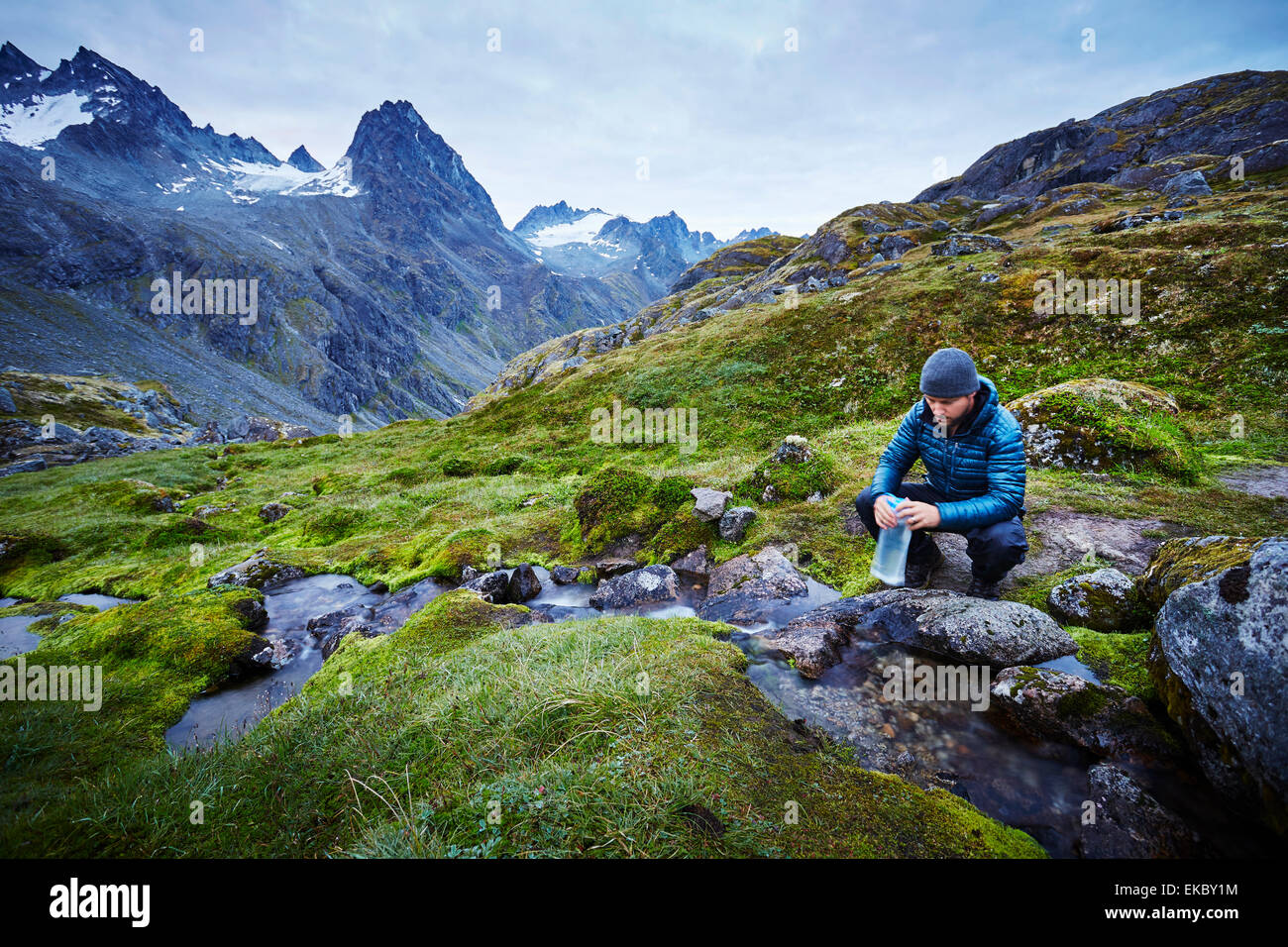 Male hiker filling water bottle from stream, Palmer, Alaska, USA - Stock Image