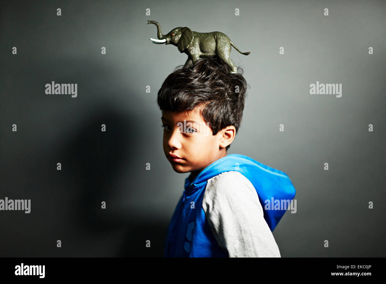 Boy with elephant ornament on top of head - Stock Image