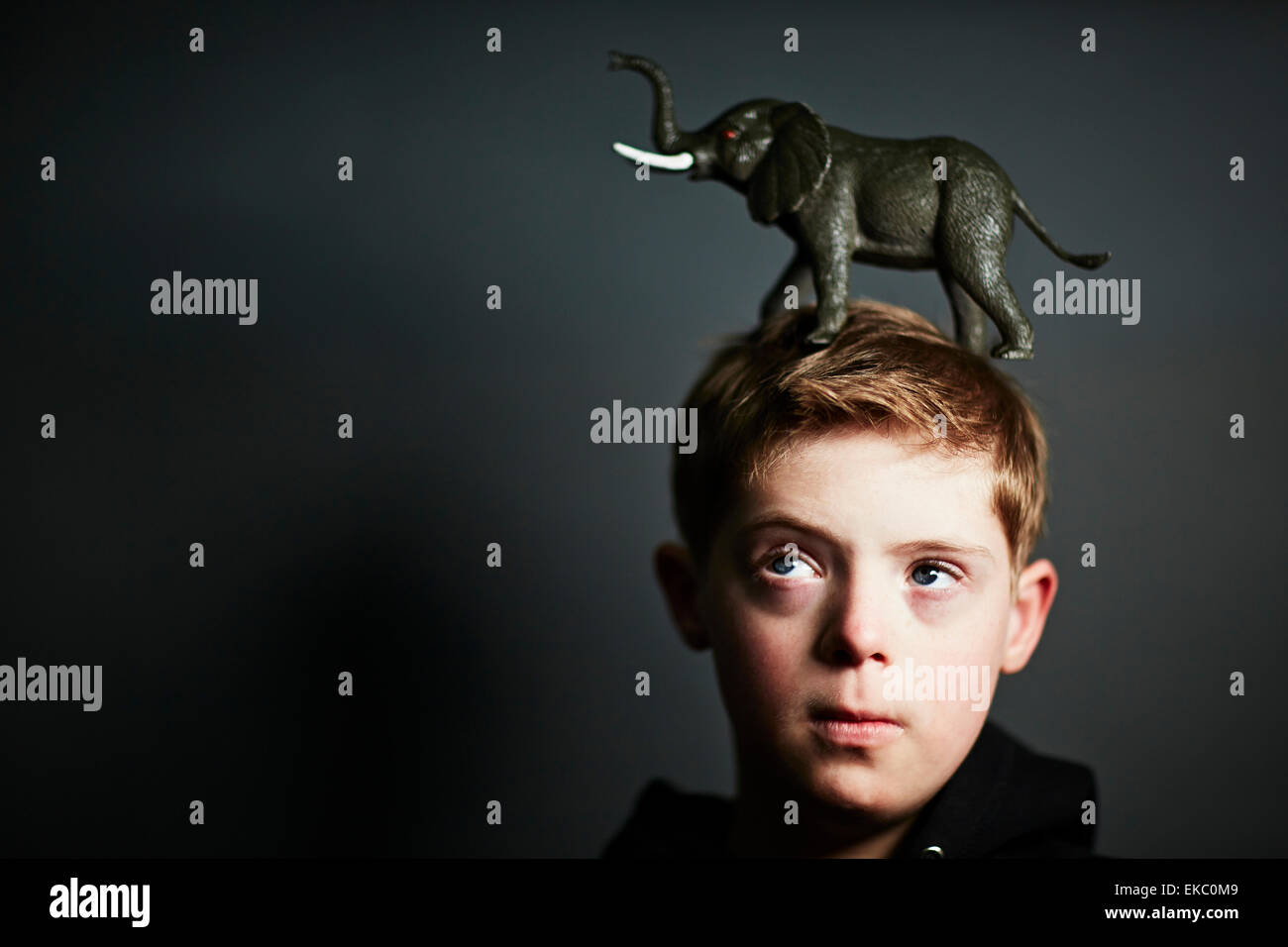 Boy with elephant toy on top of head - Stock Image