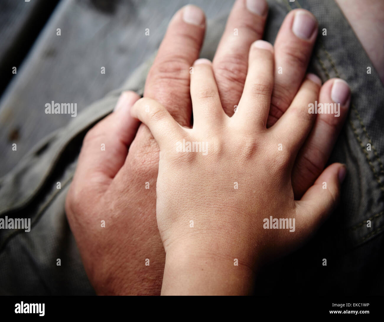 Close up of father and sons hands touching - Stock Image