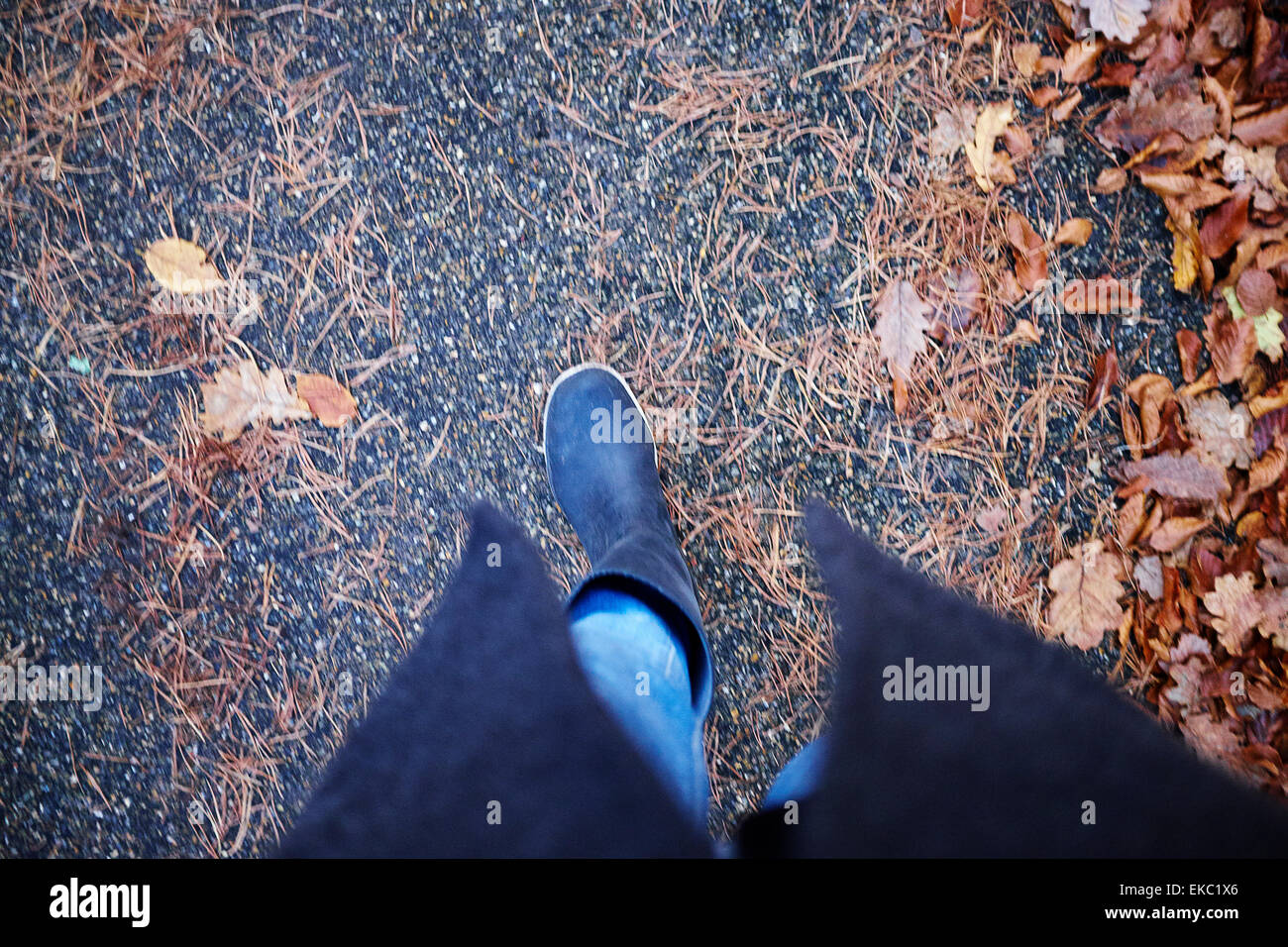 High angle view of woman in rubber boots strolling in autumn leaves - Stock Image