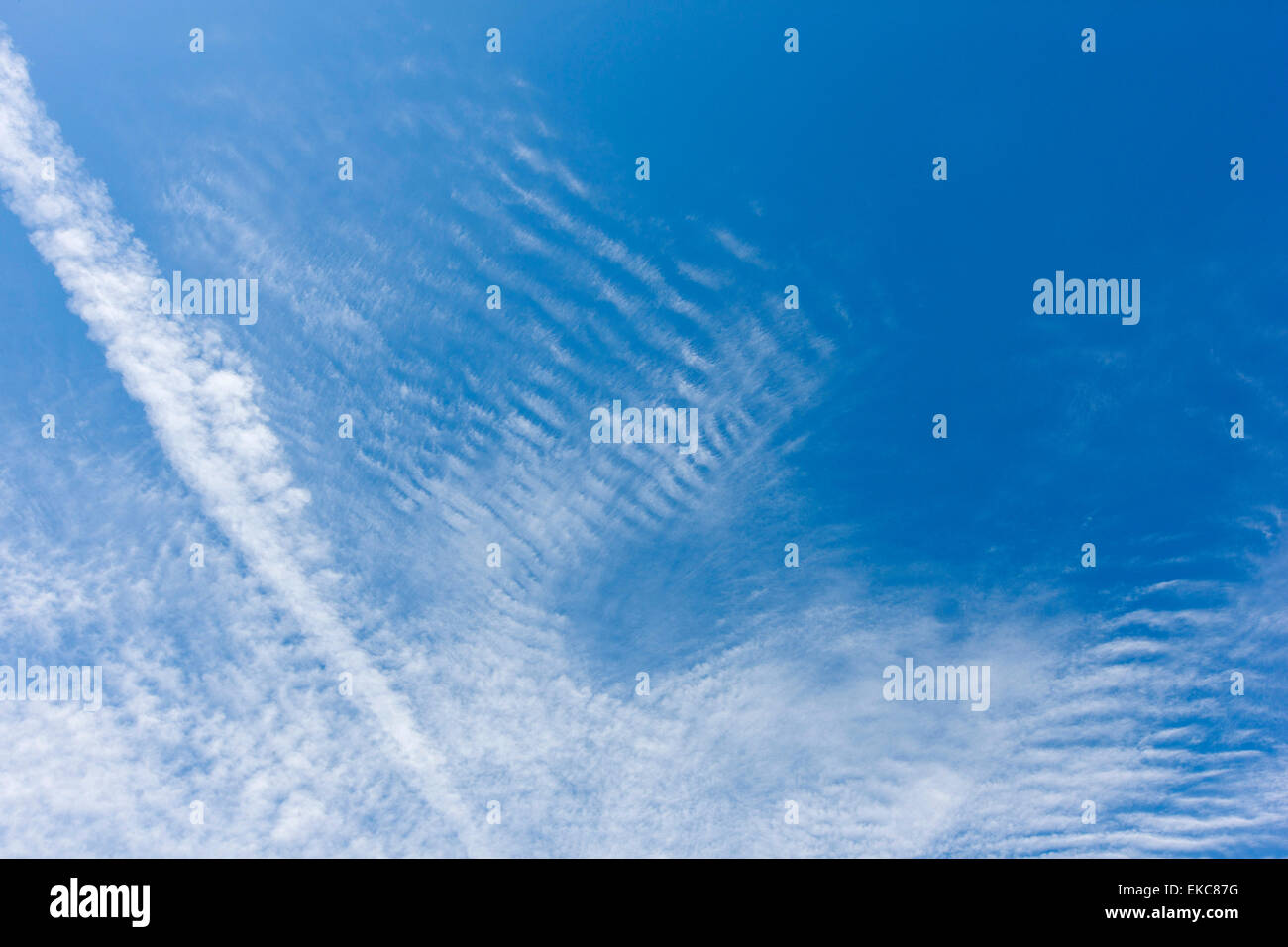 Cloud, Cirrocumulus clouds, fluffy clouds, high altitude - Stock Image
