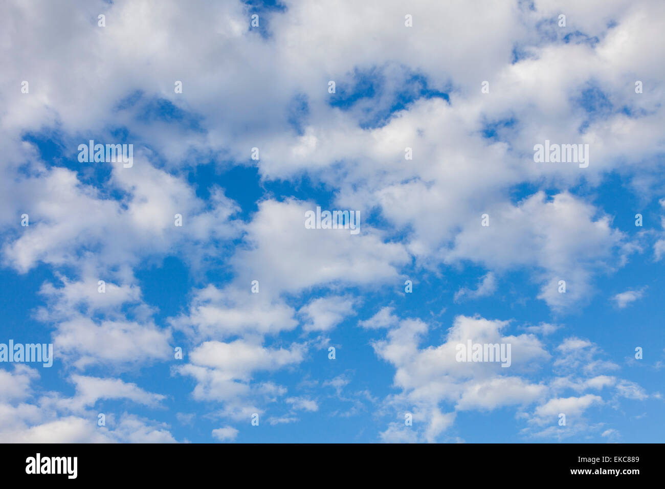 Cloud, Altocumulus clouds, fluffy clouds, - Stock Image
