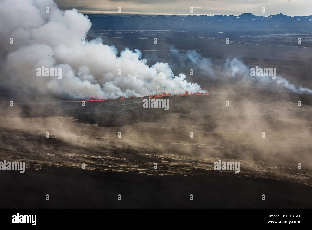 Lava and plumes from the Holuhraun Fissure by the Bardarbunga Volcano, Iceland - Stock Image