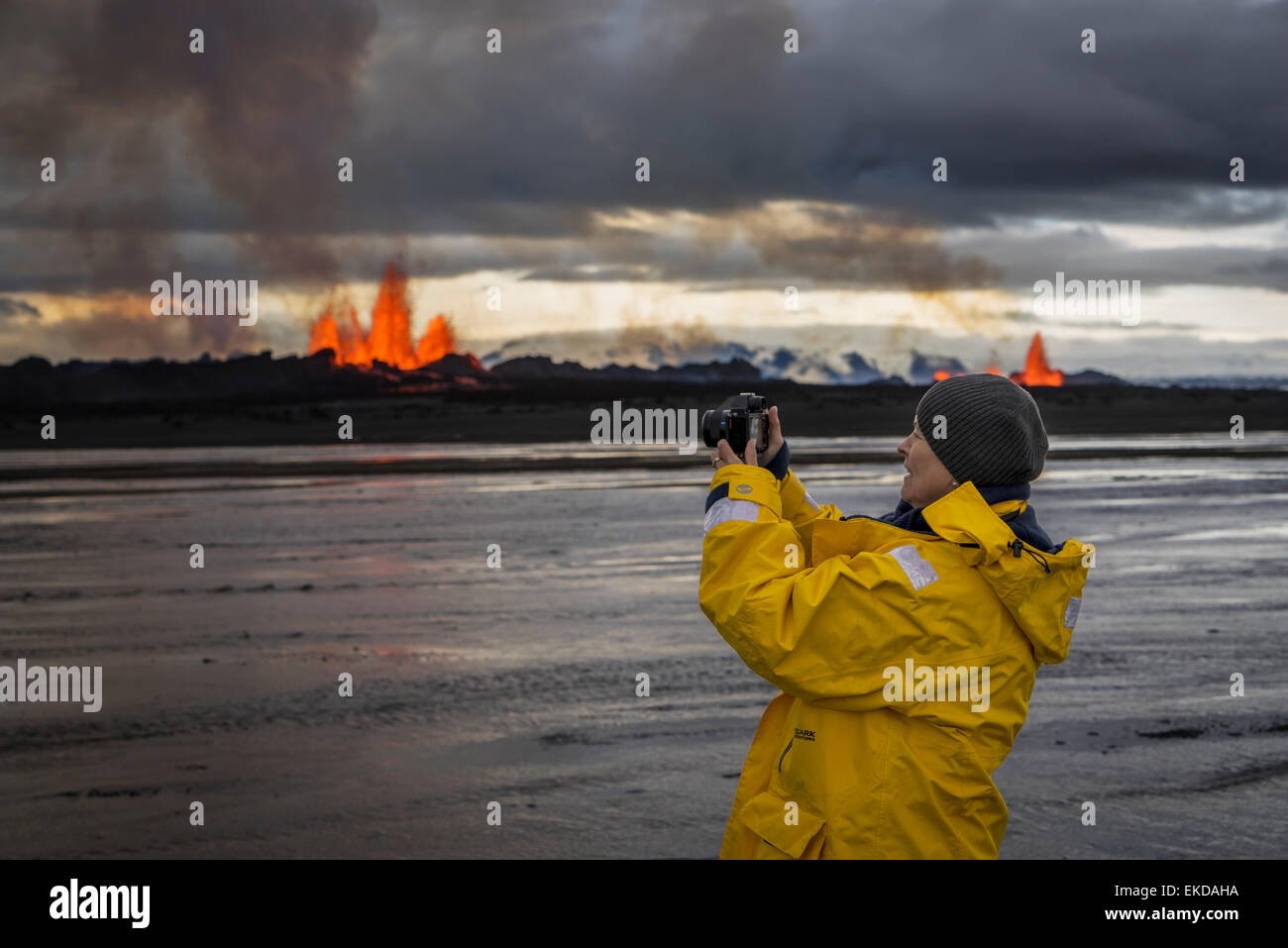 Woman taking pictures at the eruption, Holuhraun Fissure,  Bardarbunga Volcano, Iceland - Stock Image