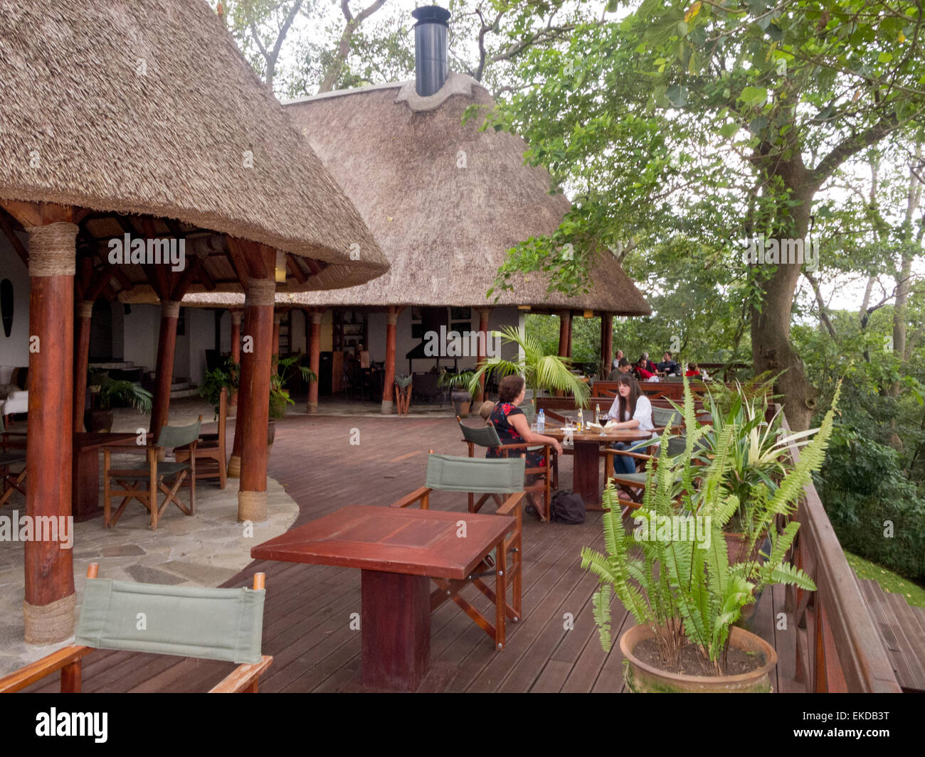 Tourists having a drink at the Mikeno Lodge Hotel, Virunga National Park, Democratic republic of Congo ( DRC ), - Stock Image