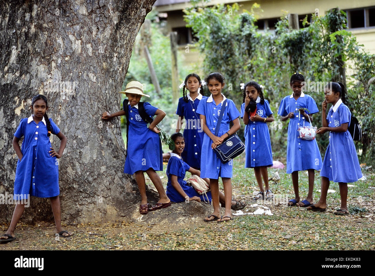 Schoolchildren at Churchill Park. Lautoka. Fiji. South Pacific. - Stock Image