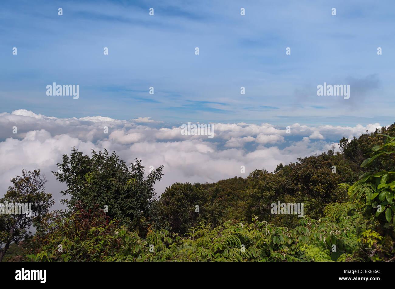 Clouds over Mountain. Volcano Mount Merapi. West Sumatra. Indonesia - Stock Image