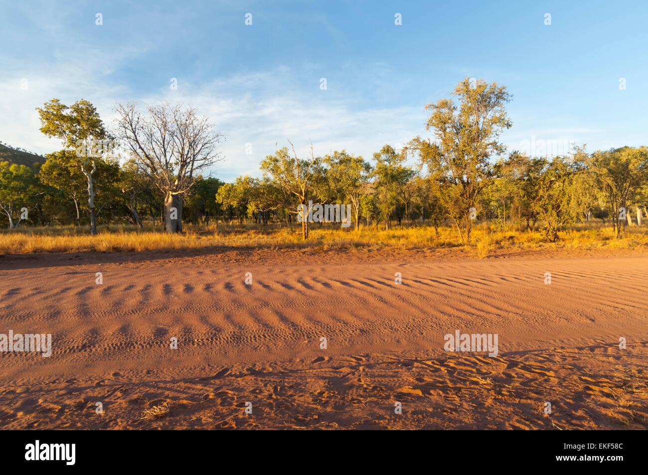 Corrugation on the Gibb River Road, Kimberley, Outback, Western Australia, WA, Australia Stock Photo