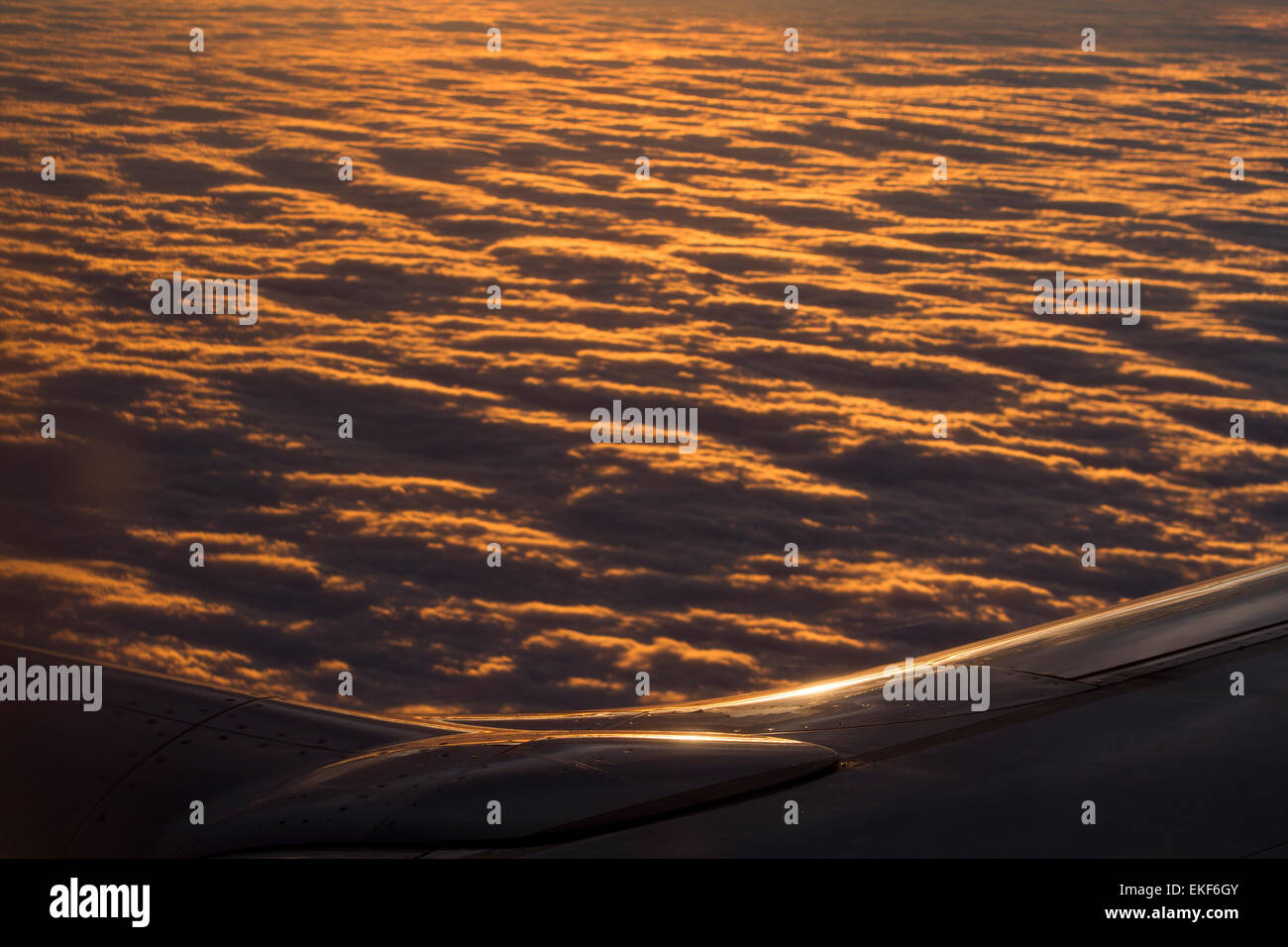 Airplane over the clouds - Stock Image
