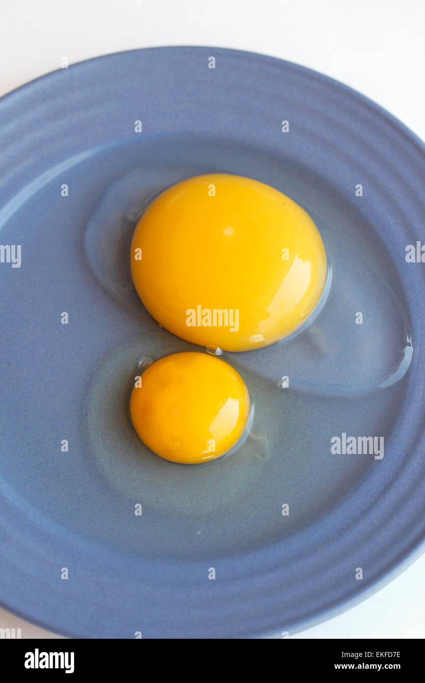 Eggs. Goose and hen. - Stock Image