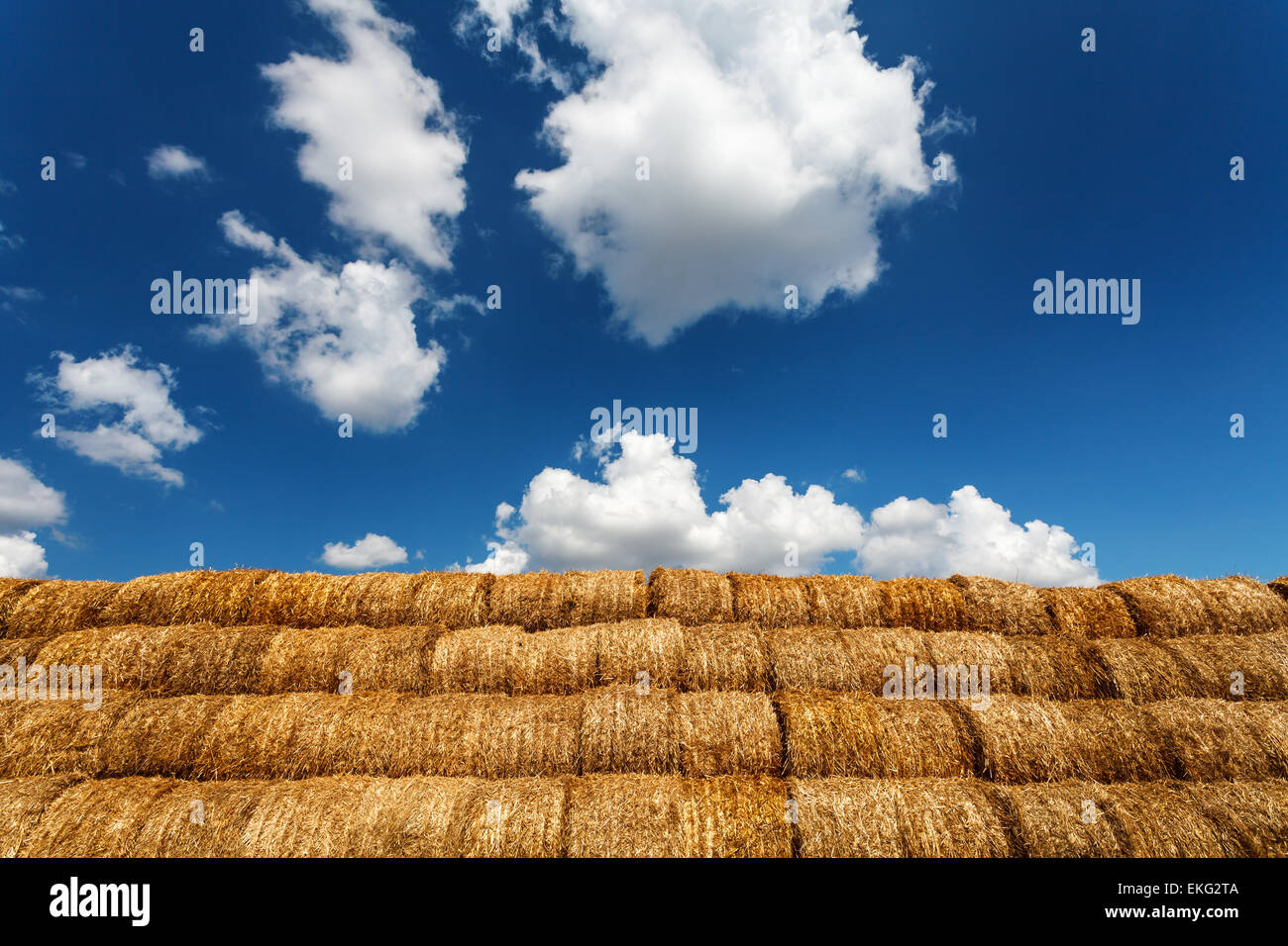 Bales of straw under blue cloudy sky - Stock Image