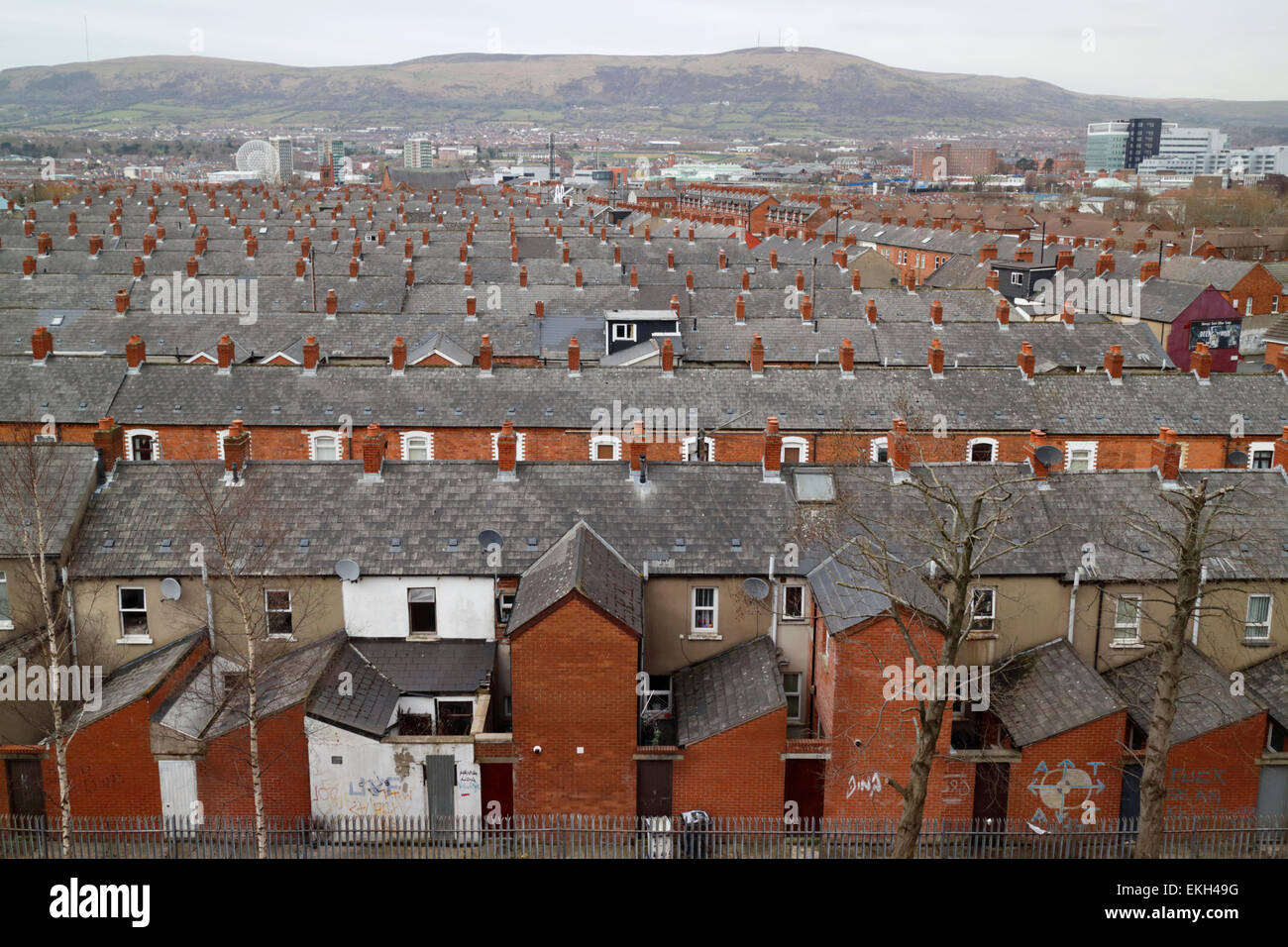 view over old area filled with victorian terraced housing south belfast northern ireland ni - Stock Image