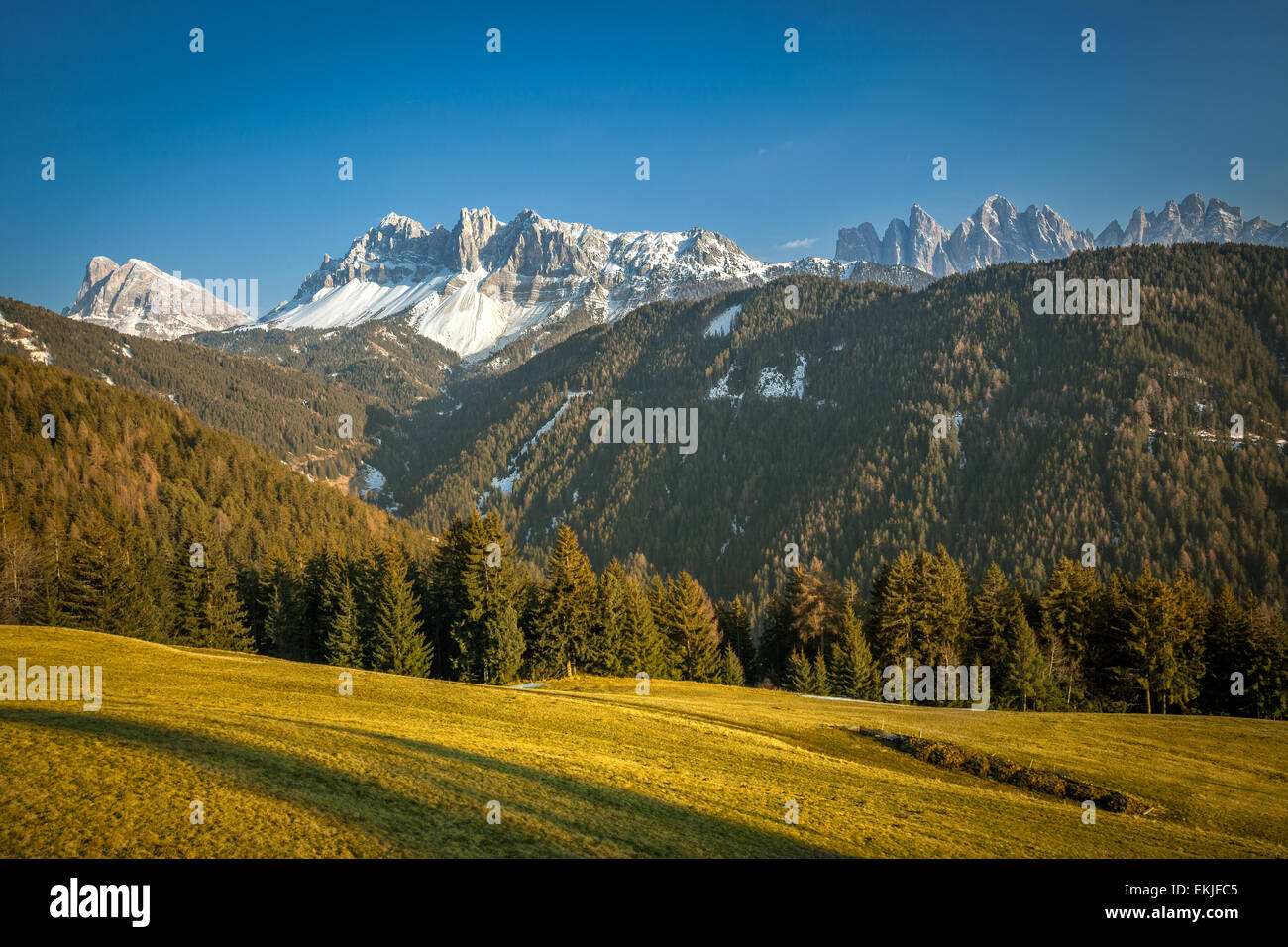 Dolomites (Dolomiti) alps viewed from Passo delle Erbe, in South Tyrol, Trentino Alto Adige, Norther Italy - Stock Image