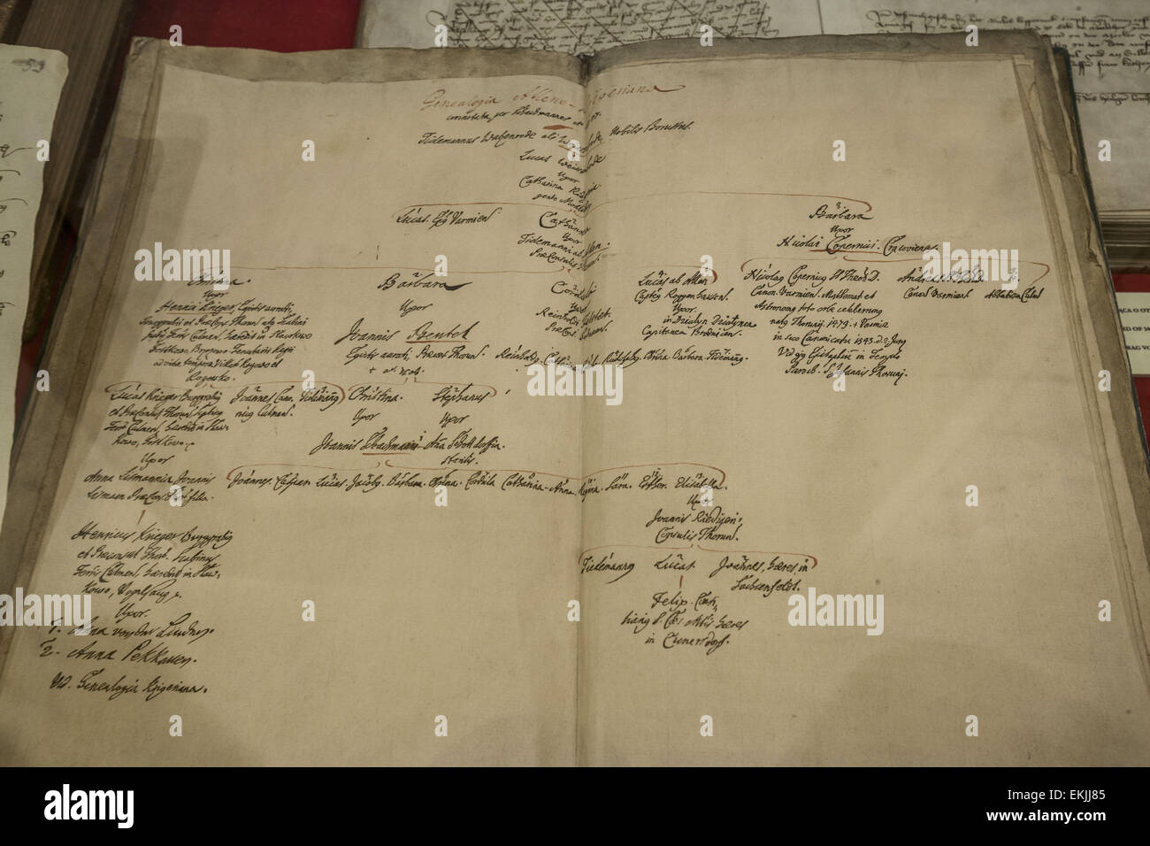 torun poland 2nd jan 2015 sheets of the family tree book of