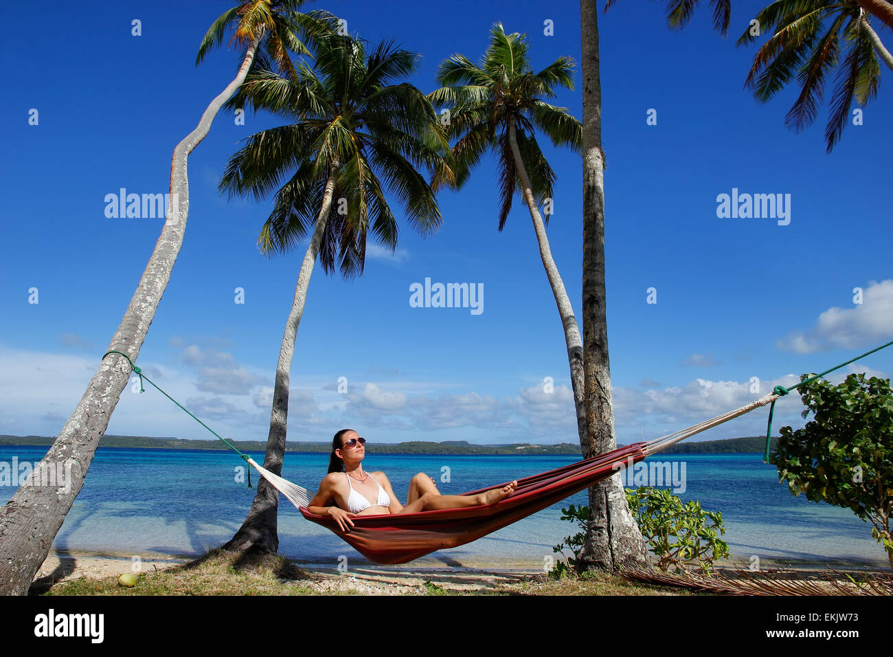 Young woman in bikini sitting in a hammock between palm trees, Ofu island, Vavau group, Tonga - Stock Image