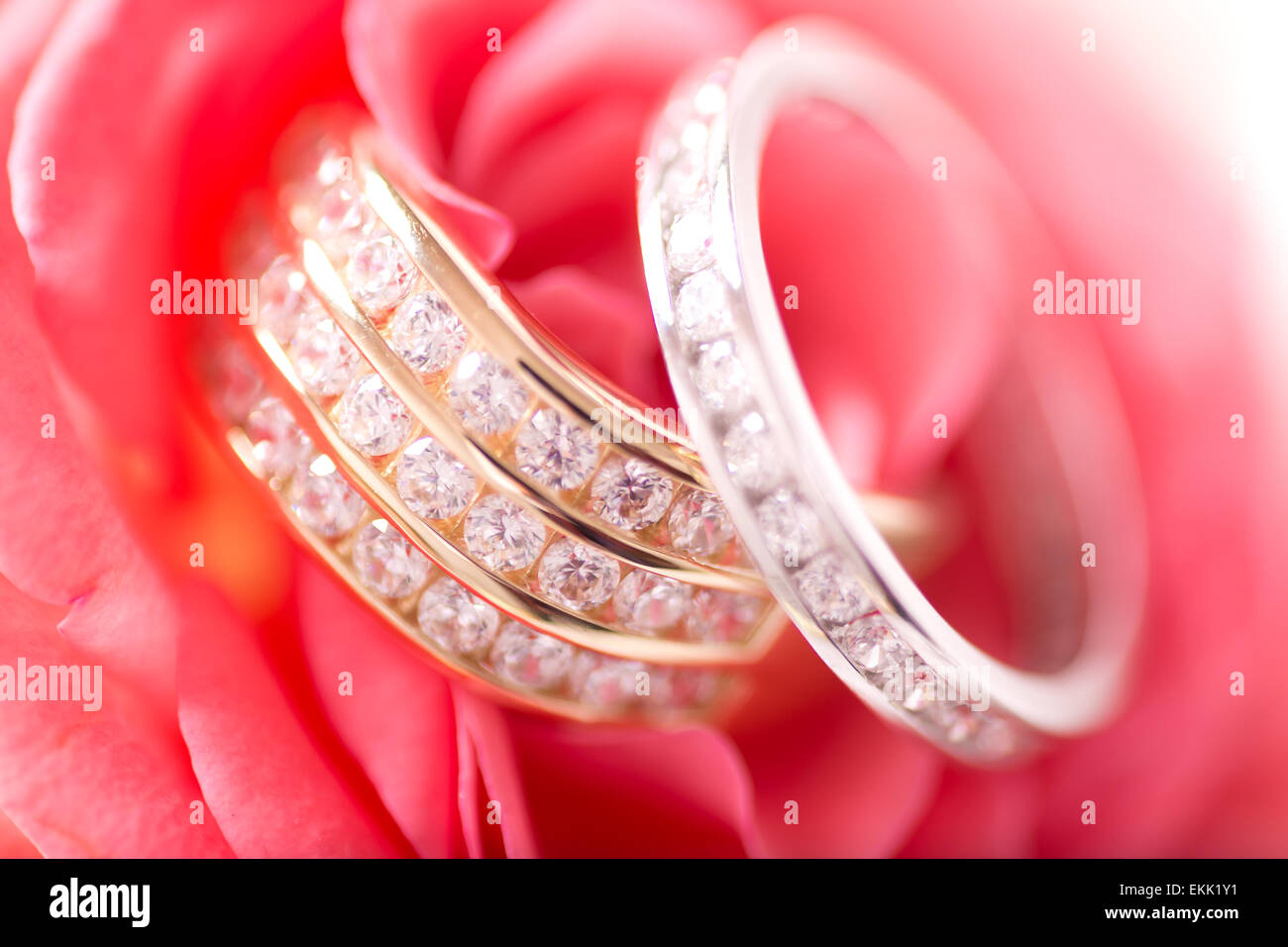 Silver Flower Red Stock Photos & Silver Flower Red Stock Images ...