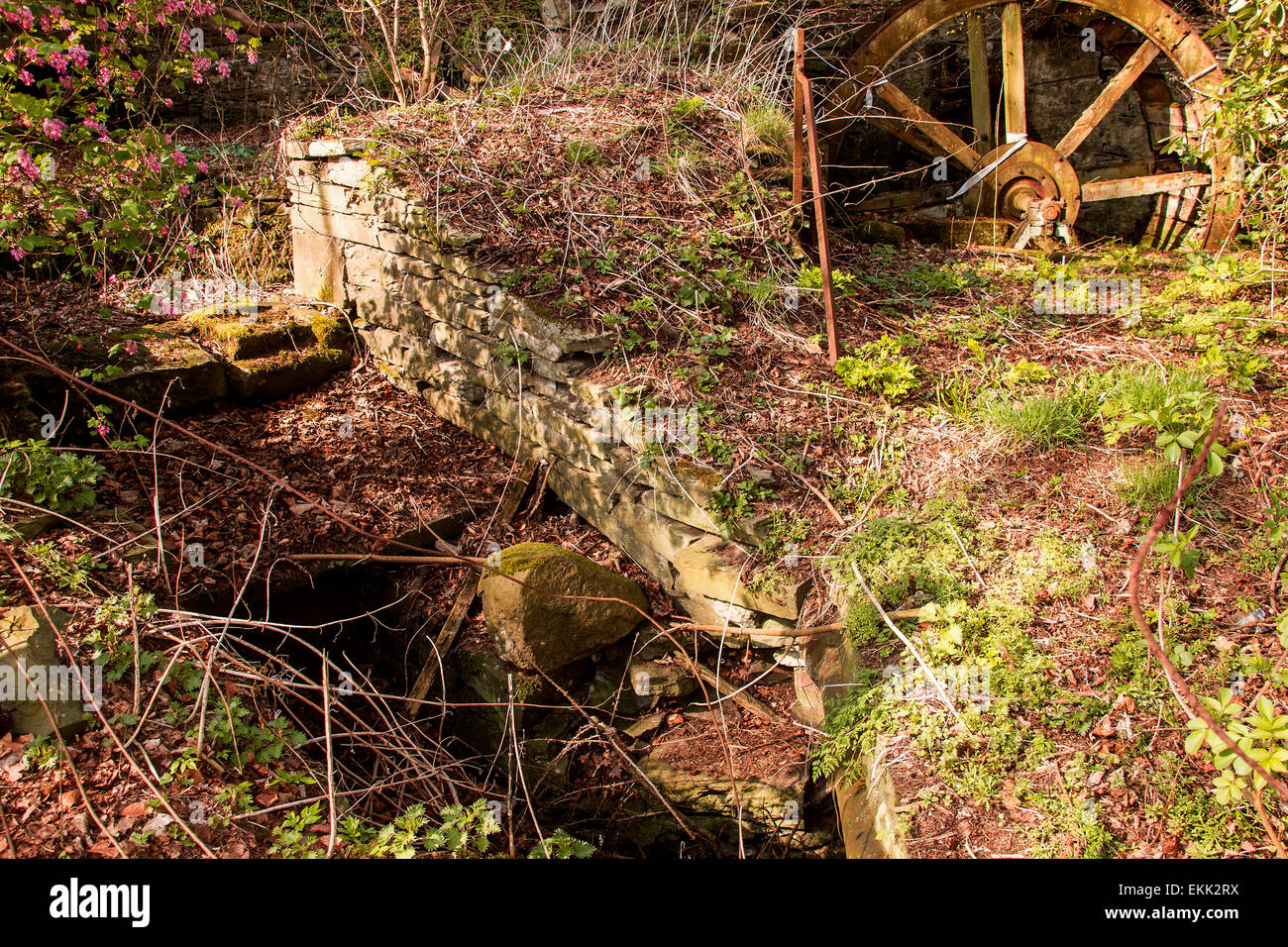 Old run down Waterwheel and Watermill on the Dighty burn at Balmuirfield along Harestane Road in Dundee Scotland, - Stock Image