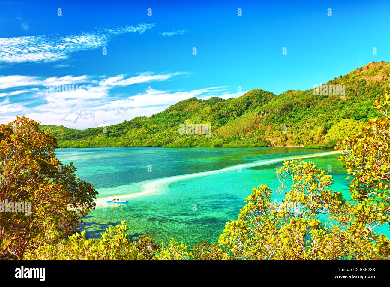 Beautiful view of a tropical island Snake. Philippines - Stock Image