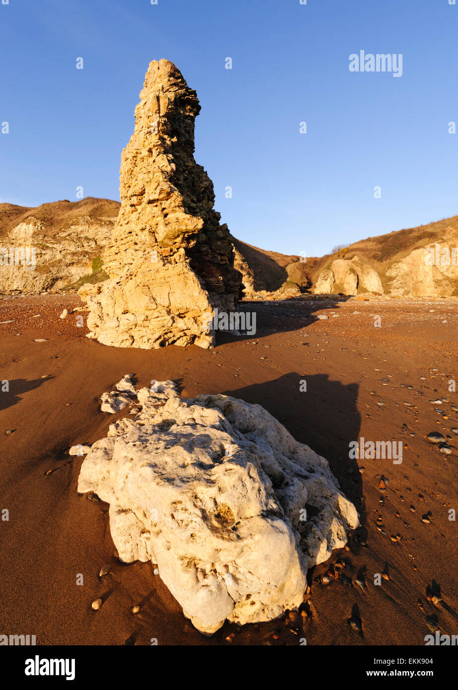 Magnesian Limestone  sea stack on Blast Beach near Seaham in County Durham - Stock Image