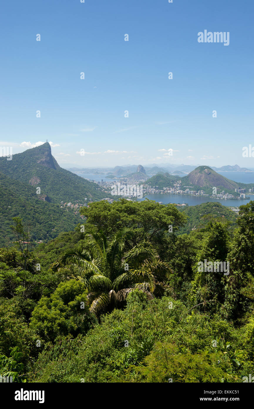 Rio de Janeiro Brazil view of the dramatic natural skyline from the surrounding jungle at the Vista Chinesa Stock Photo