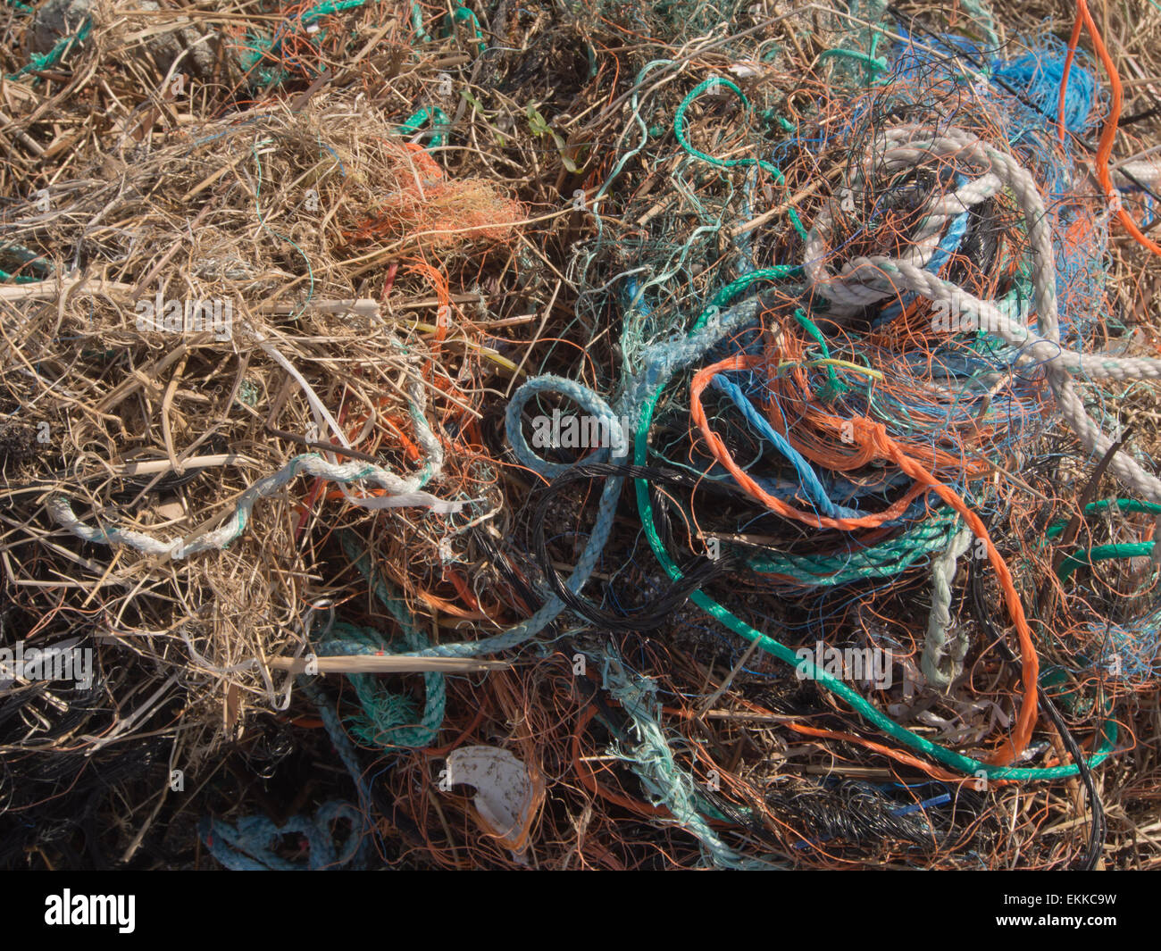 A colourful  tangled mess of lines and rope washed ashore from the North Sea during a winter storm - Stock Image