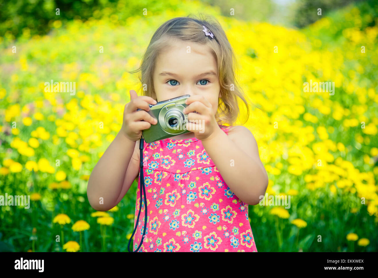 Little girl taking pictures on a meadow - Stock Image