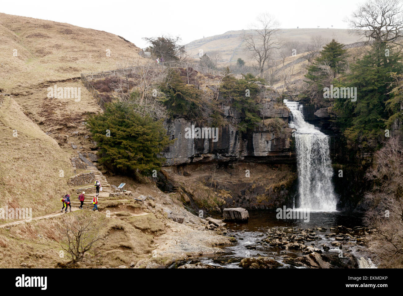 Thornton Force waterfall, part of the Ingleton Waterfalls Trail on the River Twiss, Yorkshire Dales national Park, - Stock Image