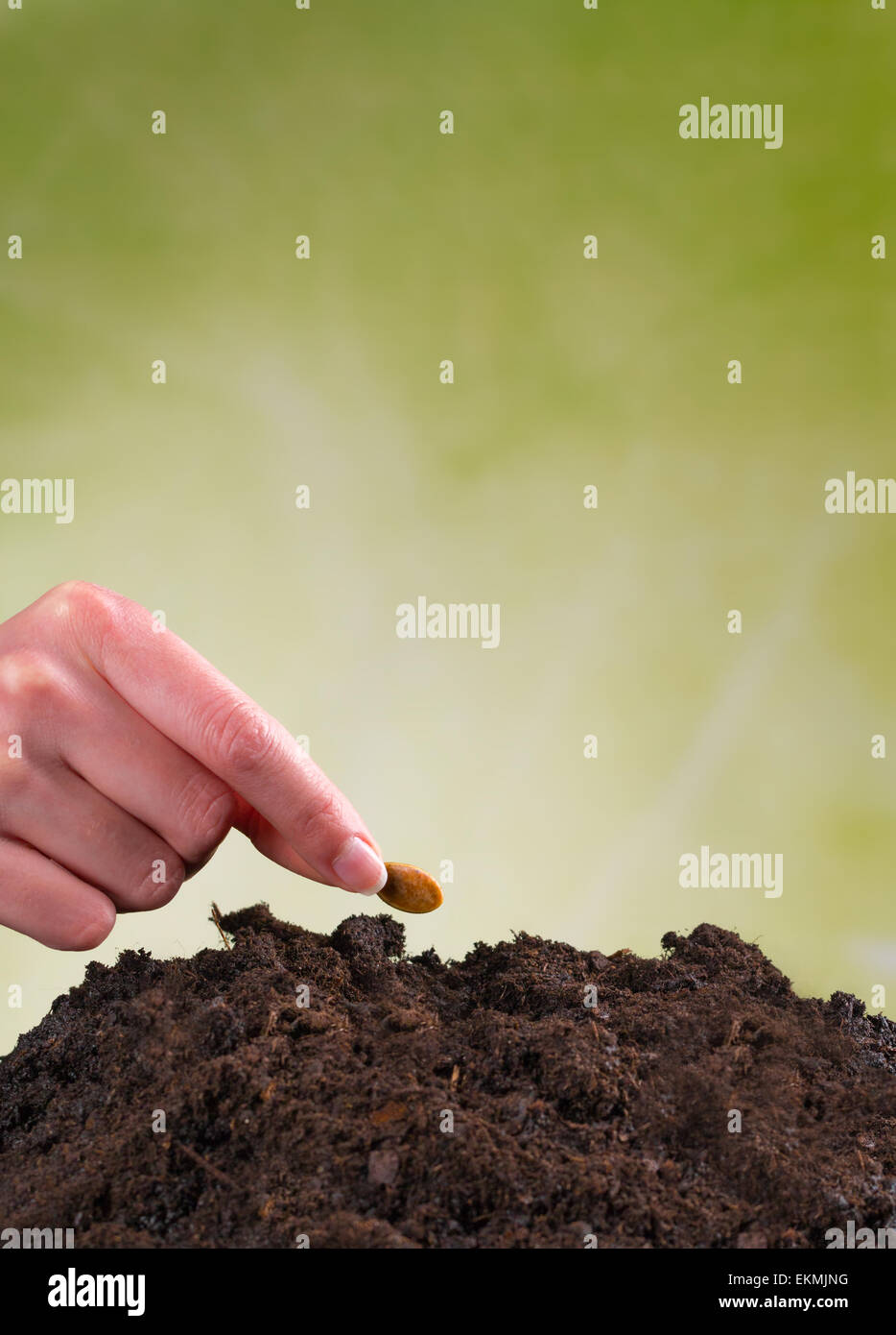 Woman hand seeding seed into pile of soil - Stock Image