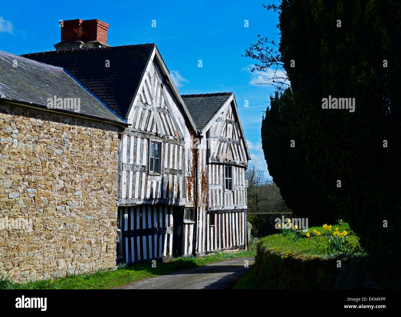 Half-timbered house in the village of More, Shropshire, England UK Stock Photo