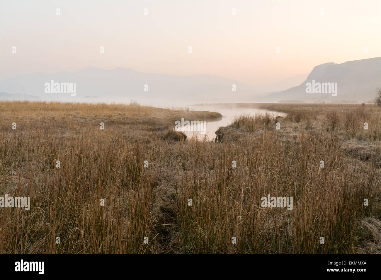 Dawn breaking and mist starting to lift as the river Derwent meets Derwentwater - English Lake District - Stock Image