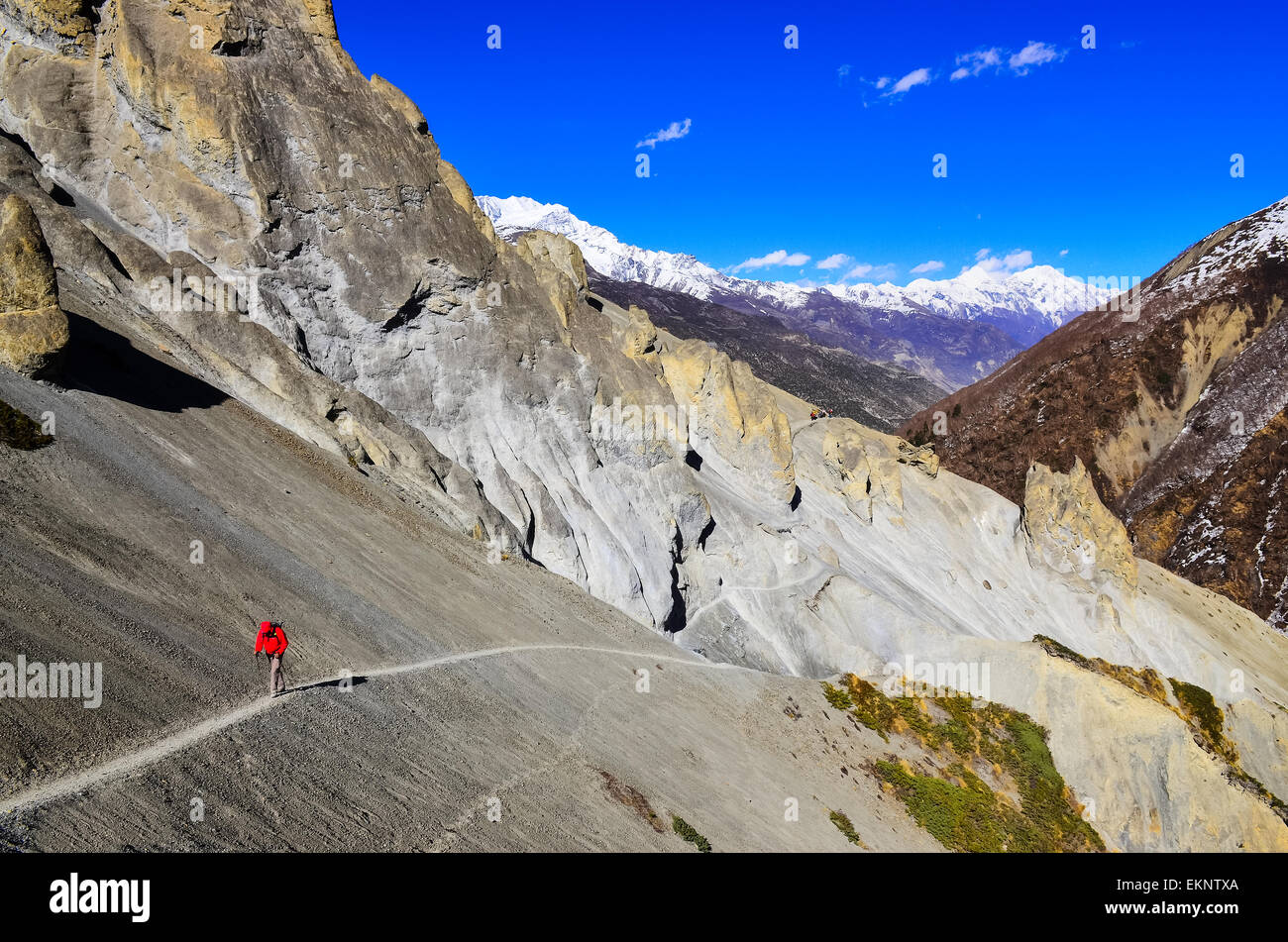 Trekker in red jacket in Himalayas mountains - Stock Image