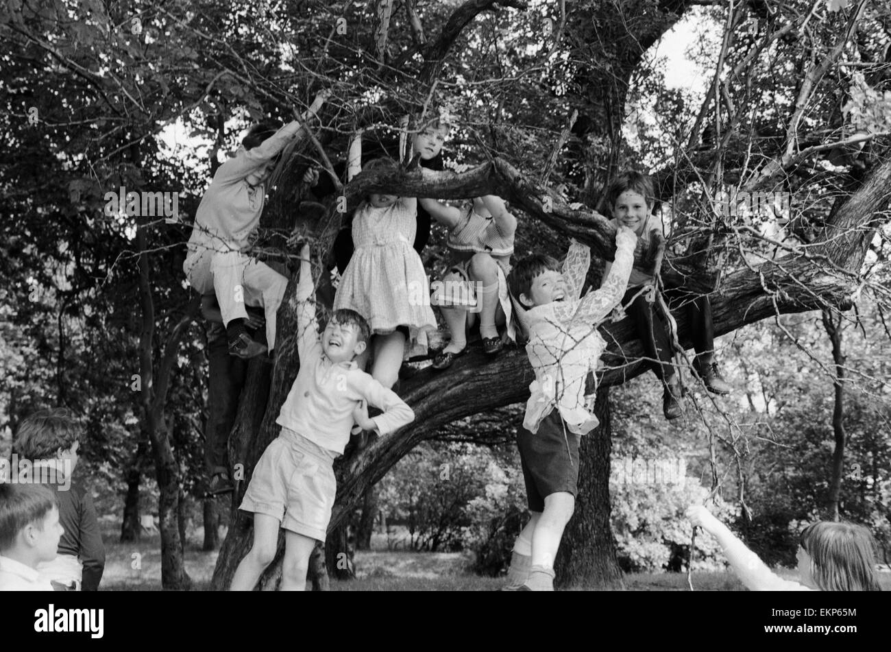 A group of children from Garston, Liverpool enjoy a day out at Sefton Park in the summer holidays. Here, the group - Stock Image