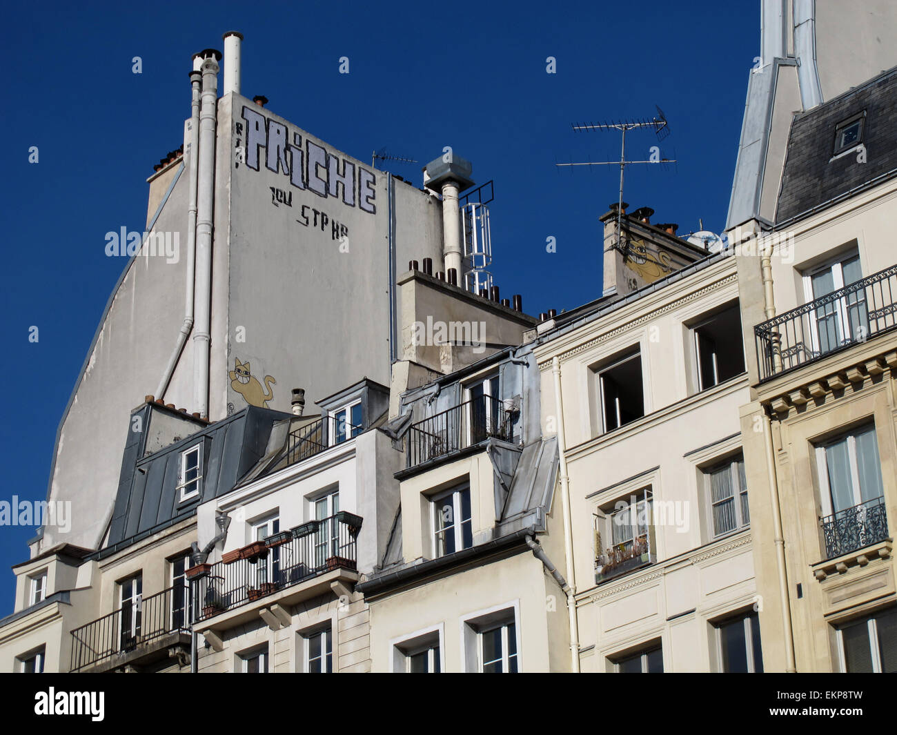 M. Chat graffiti by Thoma Vuille,on old Paris roofs and chimney,France - Stock Image