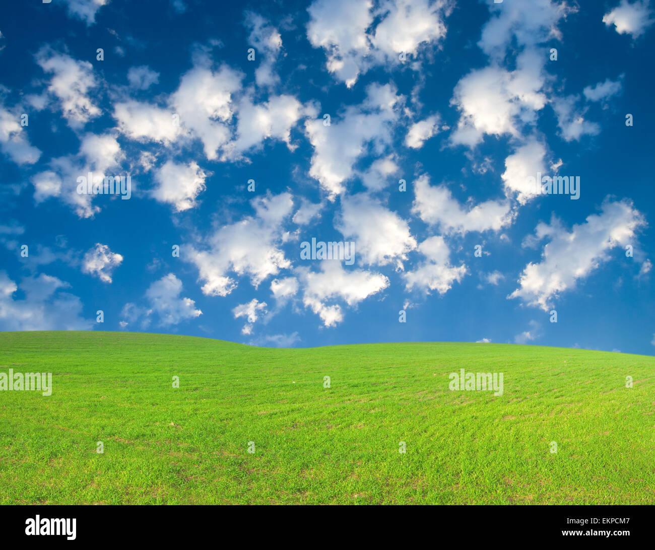 Green Fields Blue Sky White Clouds Stock Photos & Green Fields Blue
