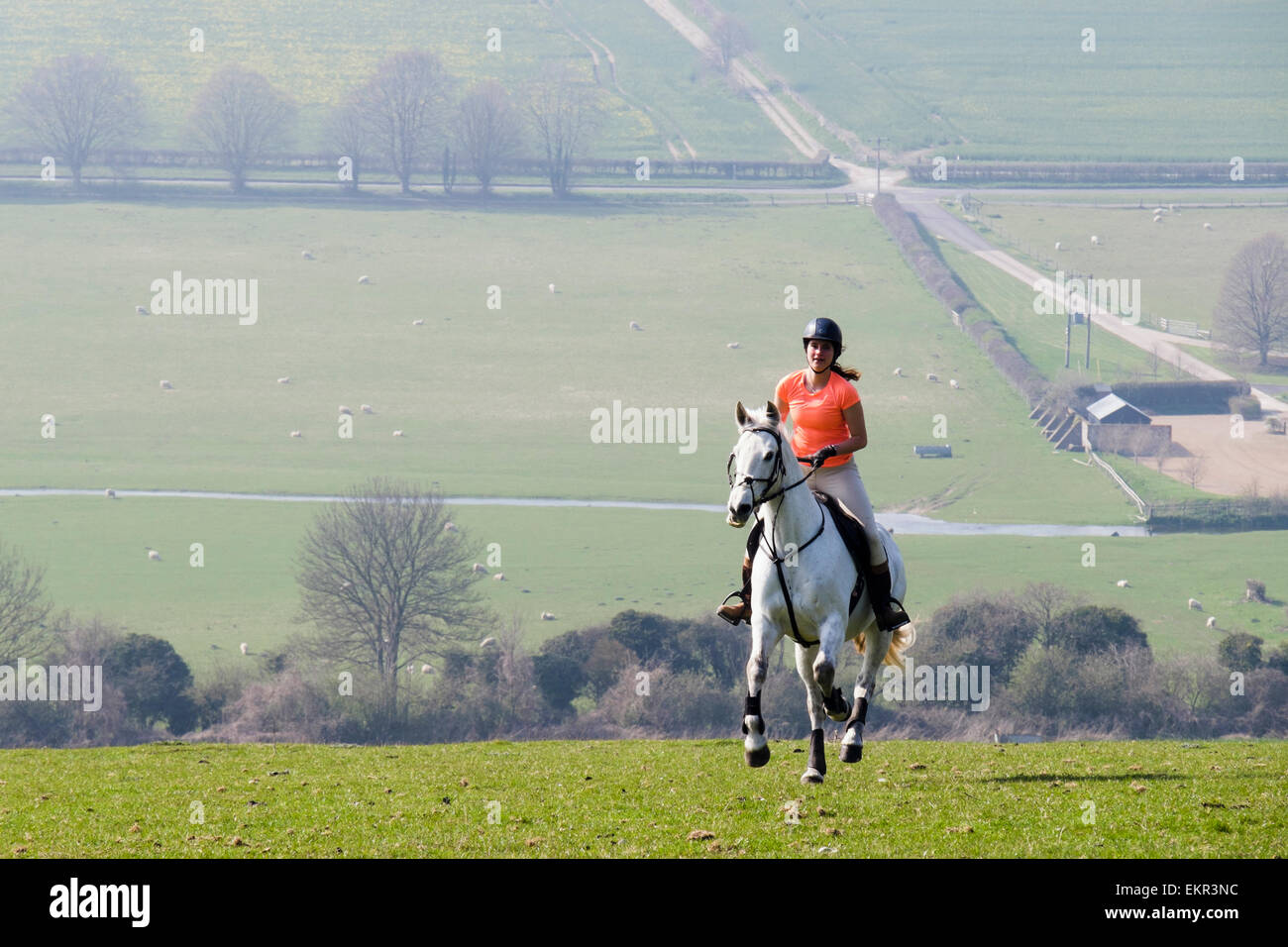 A young woman riding a white horse in countryside on Haye's Down in South Downs National Park. West Dean, West - Stock Image