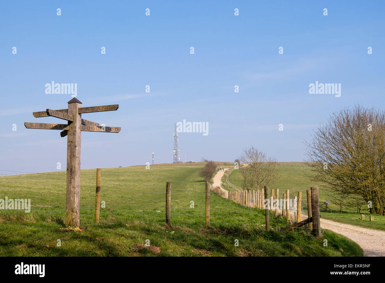 Footpath direction sign and path to Trundle Hill on Monarch's Way in South Downs National Park. St Roche's - Stock Image