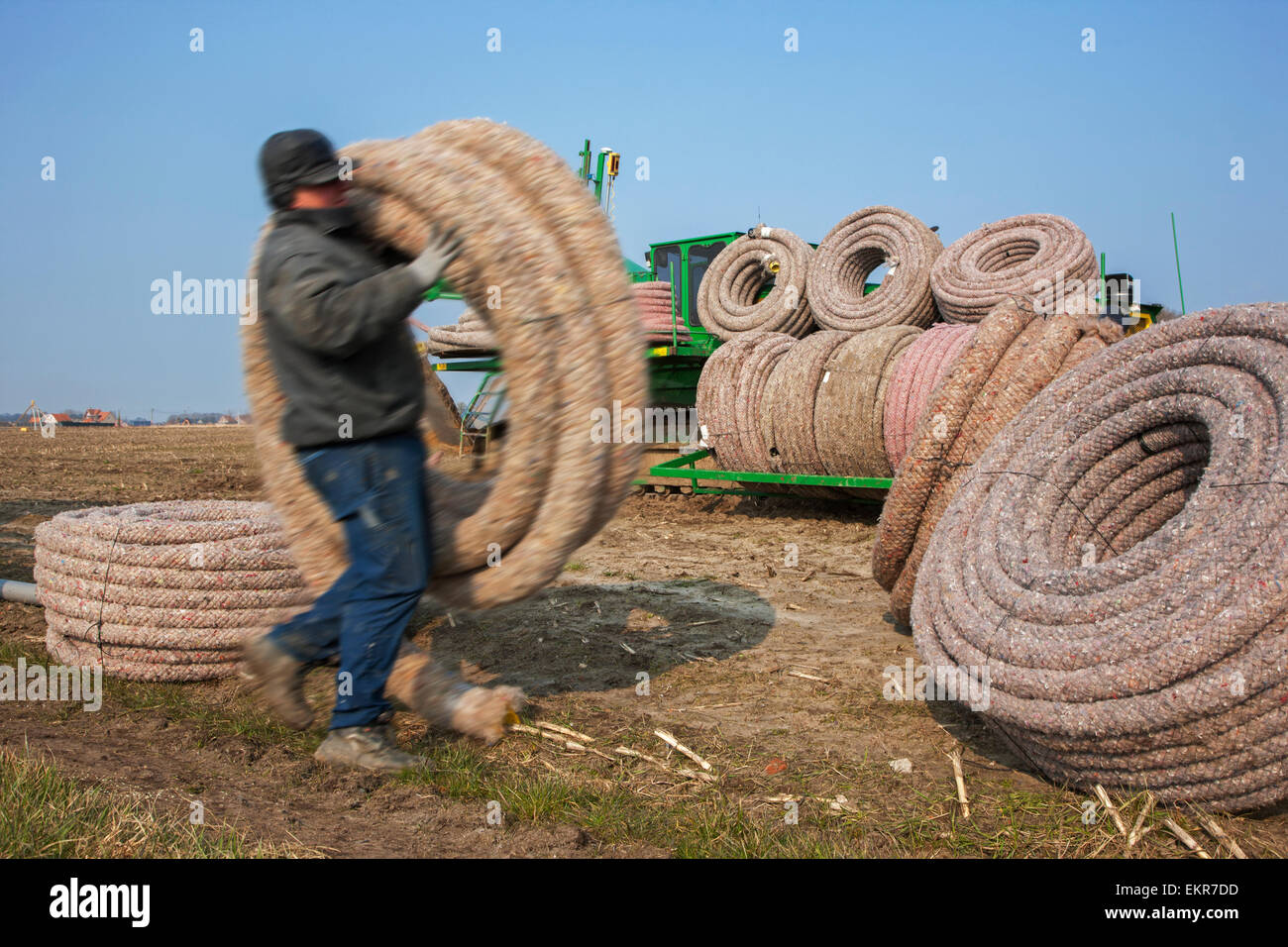 Contractor with drainage pipes loading drainage trencher / tile plow on farmland - Stock Image