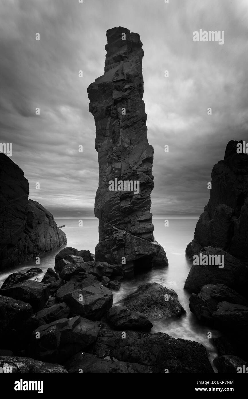 A 25m high sea stack on the Berwickshire North Sea coast. - Stock Image