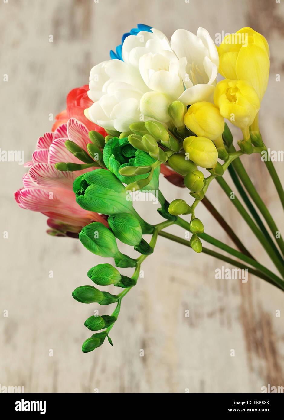 Beautiful bouquet freesia flowers stock photo 81031858 alamy beautiful bouquet freesia flowers izmirmasajfo