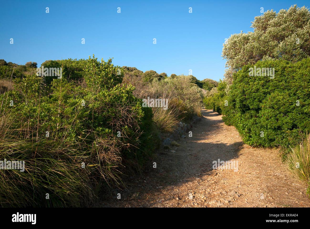 Hiking trail in Mount Orlando Regional Park, Gaeta, Lazio, Italy - Stock Image