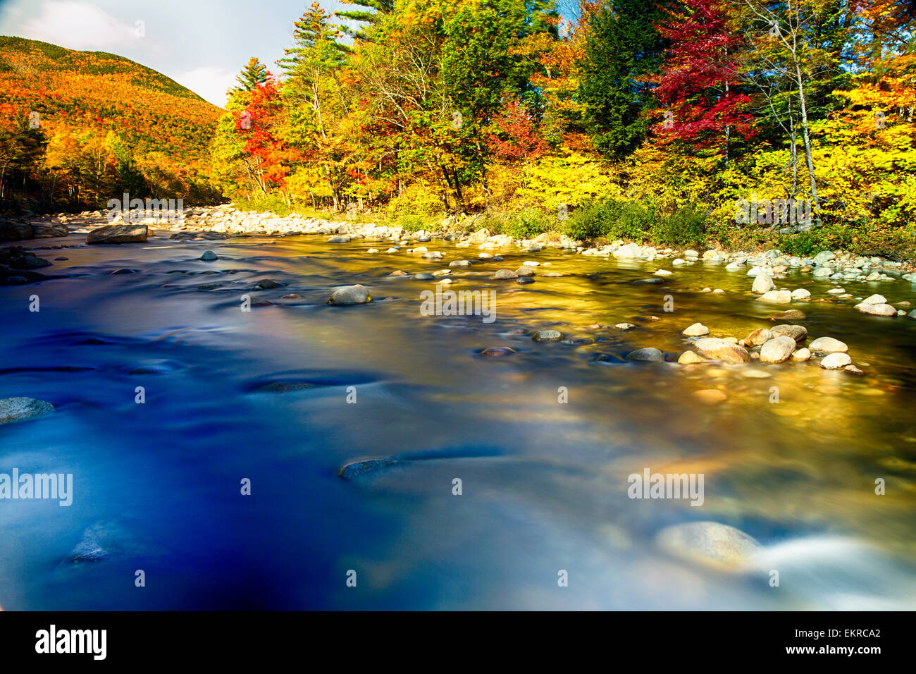 Low Angle View of a River with Colorful Autumn Foliage, Saco River, Crawford Notch, White Mountains , New Hampshire Stock Photo
