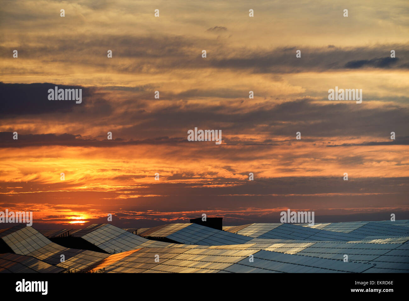 Solar cells field and sundown france europe - Stock Image